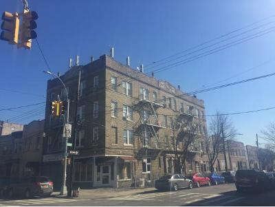 brooklyn Commercial Mixed Use For Sale: 6825 13 Ave Avenue
