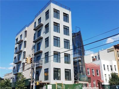 brooklyn Commercial Mixed Use For Sale: 313 52 Street