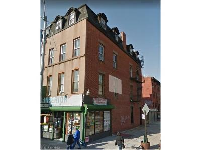 brooklyn Commercial Mixed Use For Sale: 19 Greene Avenue