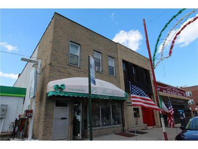 Brooklyn Commercial Mixed Use For Sale: 7414 18 Avenue