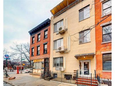 Brooklyn Multi Family Home For Sale: 301 South 4 Street