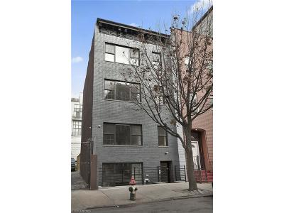 Brooklyn Multi Family Home For Sale: 57 Stagg Street