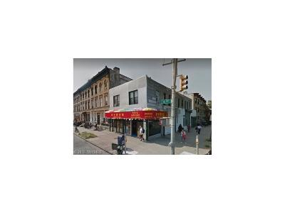 brooklyn Commercial Mixed Use For Sale: 6002-6 4 Avenue
