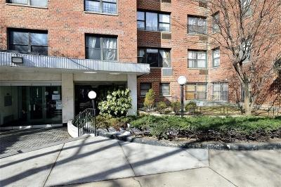 Brooklyn Co-op For Sale: 303 Beverly Road #2H