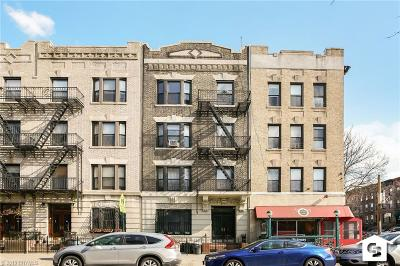 Brooklyn Multi Family Home For Sale: 817 8 Avenue