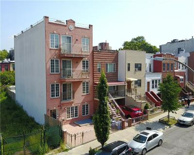 Brooklyn Multi Family Home For Sale: 187 18 Street