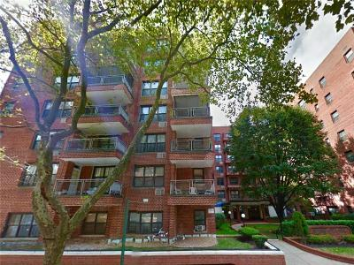 Brooklyn Co-op For Sale: 1270 East 51 Street #1M
