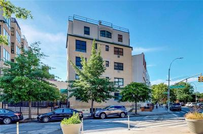 Brooklyn NY Condo For Sale: $1,150,000