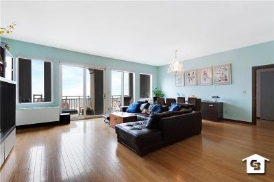 Brooklyn Condo For Sale: 45 Oceana Drive East #PH1B