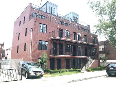 Brooklyn NY Condo For Sale: $729,000
