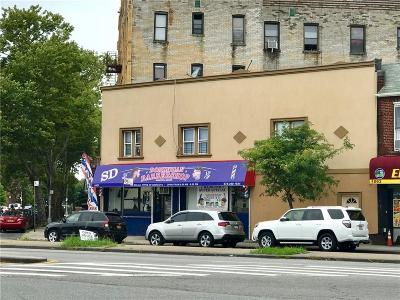 Brooklyn Commercial Mixed Use For Sale: 1087 Linden Boulevard
