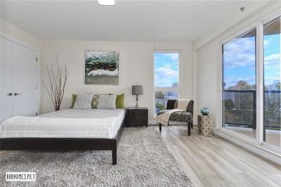 Brooklyn NY Condo For Sale: $999,000