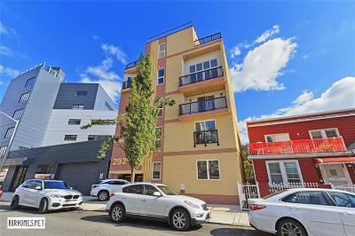 Brooklyn NY Condo For Sale: $399,000
