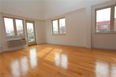 Condo For Sale: 2517 Voorhies Avenue #210