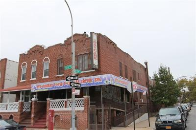 Brooklyn Multi Family Home For Sale: 2007 Linden Boulevard