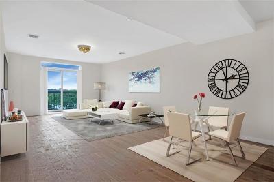 Brooklyn Condo For Sale: 1251 East 19 Street #PH B