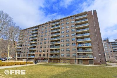 Brooklyn Condo For Sale: 200 Cozine Avenue #6H