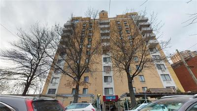 Brooklyn NY Condo For Sale: $1,299,000