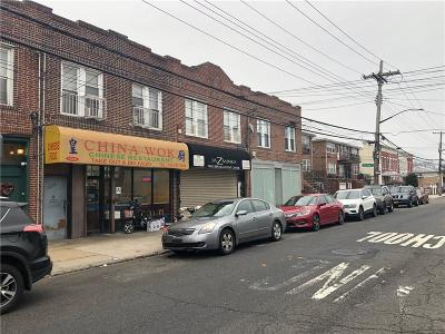 Brooklyn Commercial Mixed Use For Sale: 1035 East 92 Street