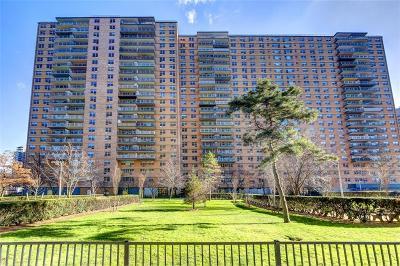 Brooklyn Co-op For Sale: 458 Neptune Avenue #8R