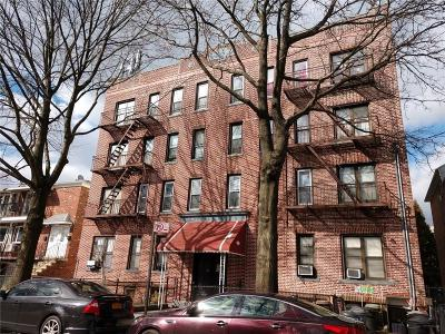 Brooklyn Multi Family Home For Sale: 22 Bay 37 Street
