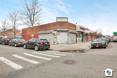 brooklyn Commercial For Sale: 1199 Sutter Avenue