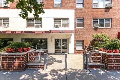 Brooklyn Co-op For Sale: 215 Adams Street #11G