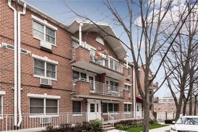 Brooklyn Condo For Sale: 285 Windsor Place #4