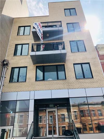 Brooklyn Condo For Sale: 838 41 Street #5A