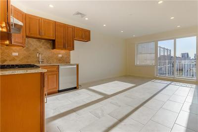 Brooklyn Condo For Sale: 2848 West 15 Street #3A