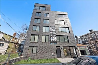 Brooklyn Condo For Sale: 3311 Newkirk Avenue #6A