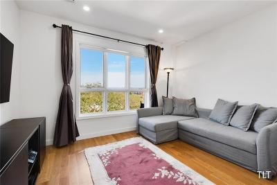 Brooklyn NY Condo For Sale: $879,000