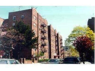 Brooklyn Condo For Sale: 40 Tehama Street #3H