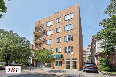 Brooklyn Condo For Sale: 1384 East 19 Street #2B