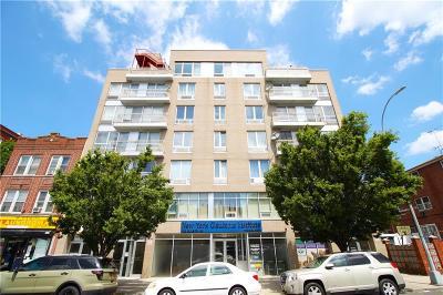 Brooklyn Condo For Sale: 103 Quentin Road #B502