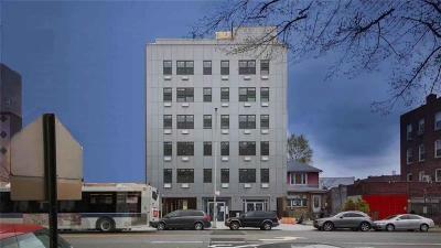 Brooklyn Condo For Sale: 2533 Ocean Avenue #3D