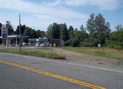 Residential Lots & Land A-Active: 6082 Rt. 430 E. Lake Road