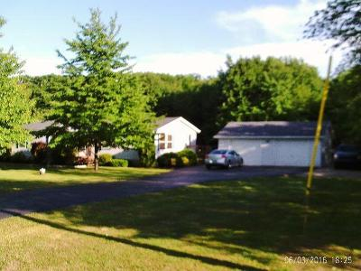 Silver Creek NY Single Family Home Sold: $107,900