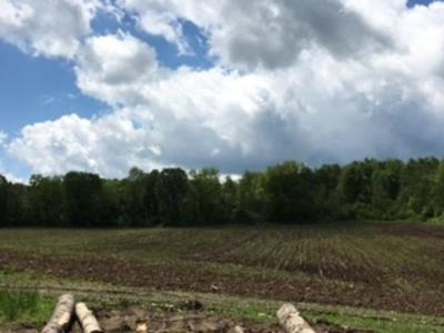Busti NY Residential Lots & Land A-Active: $24,900