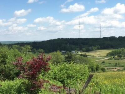 Busti NY Residential Lots & Land A-Active: $204,900