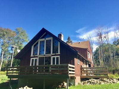 Chautauqua County Single Family Home Sold: 6445 South Portage Road South