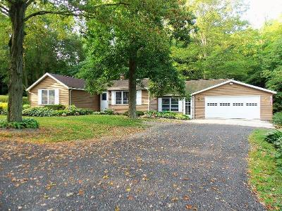 Westfield Single Family Home A-Active: 7325 Bliss Road