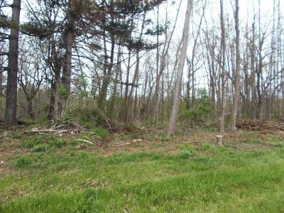 Hanover Residential Lots & Land A-Active: Route 5 & 20