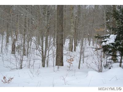 Old Forge NY Residential Lots & Land A-Active: $49,000