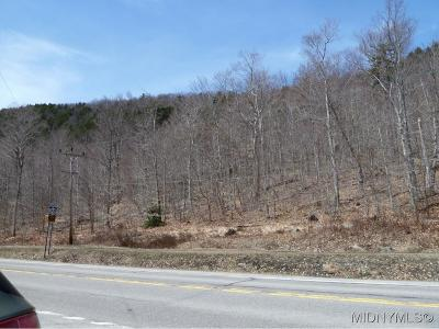 Old Forge Residential Lots & Land A-Active