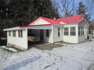Herkimer County Single Family Home A-Active: 607 Spinnerville Gulf Road