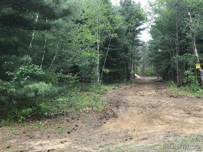 Forestport Residential Lots & Land A-Active: 3 Blue Waters Estates