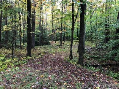 Forestport Residential Lots & Land A-Active: Mohawk Drive