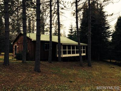 Herkimer County Single Family Home A-Active: Sandy Hill Lane