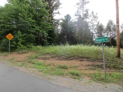 Forestport Residential Lots & Land A-Active: Rogers Road